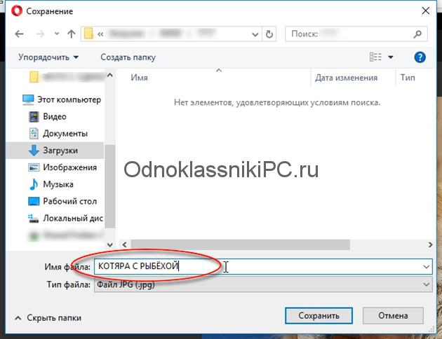 kotyara-s-rybkoj-foto