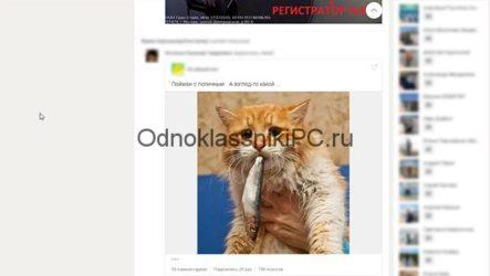 Как скачать фото с Одноклассников на компьютер в хорошем качестве