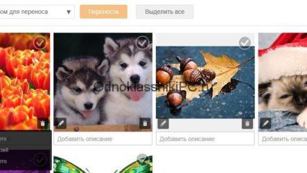 Как перенести фото на Одноклассники с компьютера