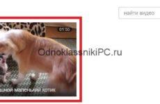 Как в Одноклассниках скинуть видео с компьютера в сообщении?